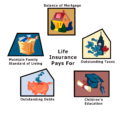 how to buy a life insurance policy